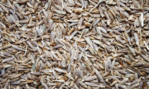 Cumin fights anemia, cholesterol and diabetes